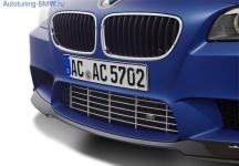 Решётка переднего бампера AC Schnitzer для BMW M5 F10 5-серия