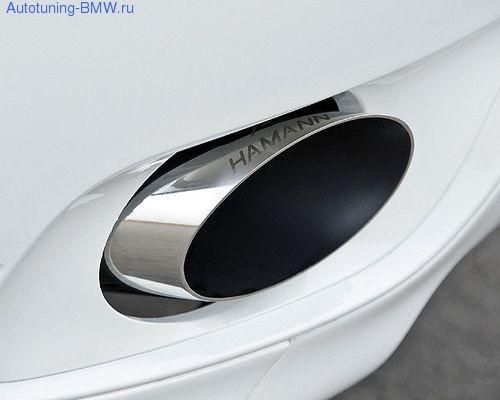 Выхлопная система Hamann для BMW X6 E71